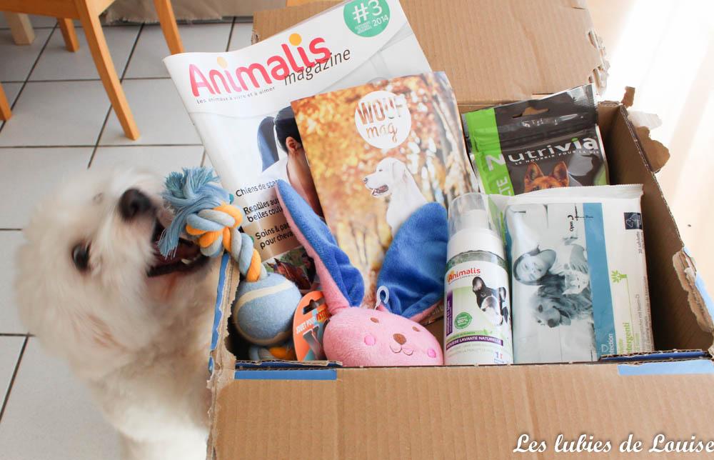 Un petit cadeau pour mes chiens : La wouf box d'octobre avec Animalis