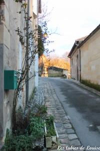 Saint émilion- les lubies de louise-11