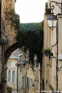 Saint émilion- les lubies de louise-4